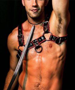 Harness Masculino Bulldog Peitoral BDSM Vestuário